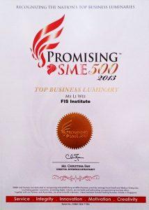Promising SME 500 2013